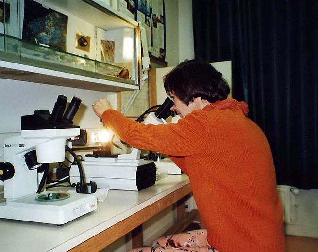 At times, the gemologist must observe the inclusions in a stone with an immersion microscope.